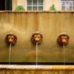 Three Lions - Raymond Murray